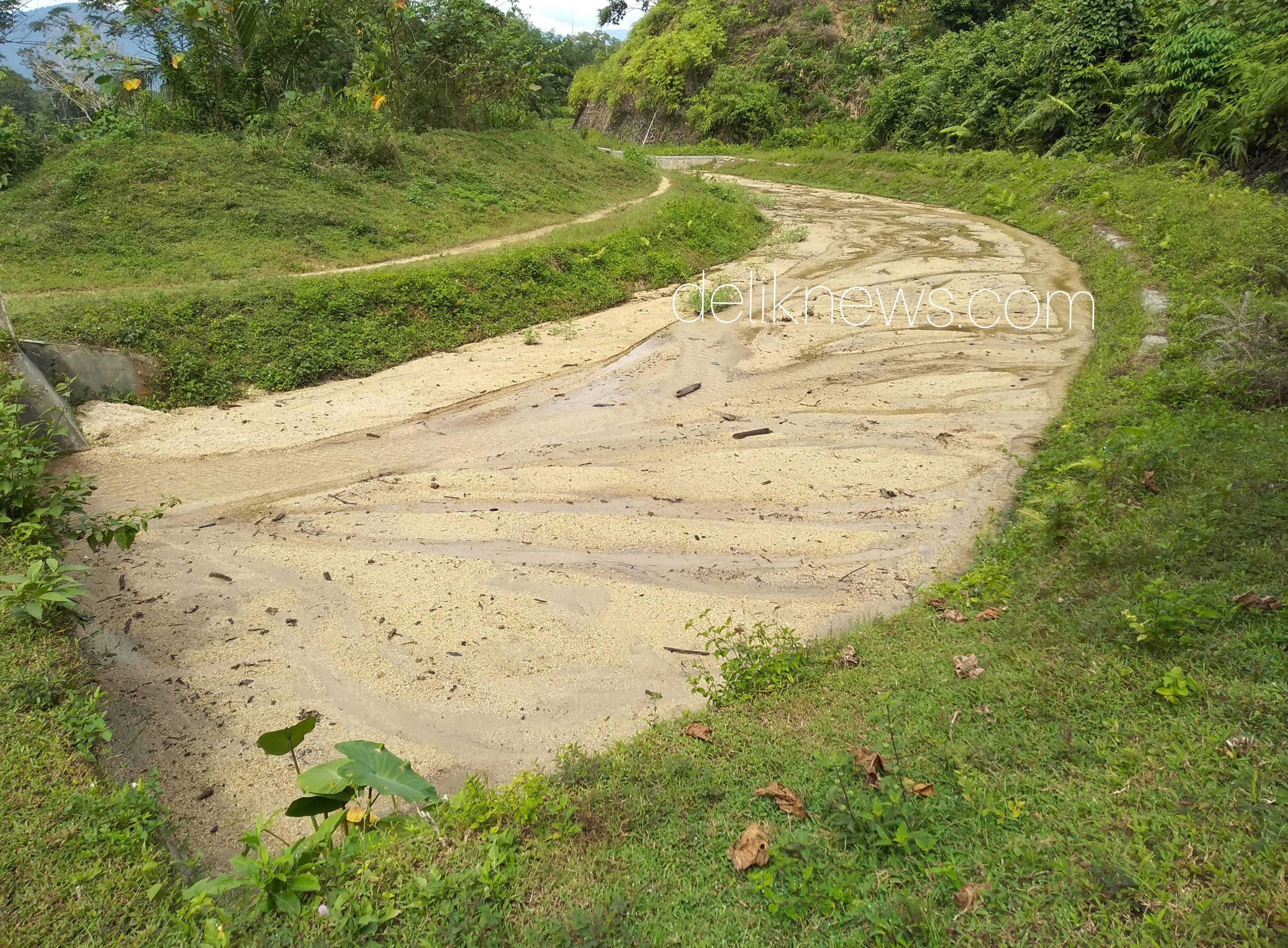 Kondisi saluran irigasi Panti-Rao yang tersumbat, Minggu (23/12/18).