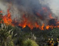 Kebakaran hutan di daratan Sumatera 2018