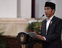 Presiden Jokowi di Istana Bogor (foto : Antara)