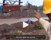 Video Viral Status Ternate