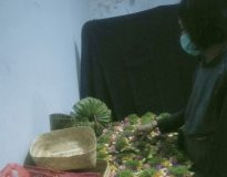 Made Widyastuti Pramesti saat membuat canang. (Deliknews.com)